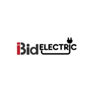 Profile photo of ibidelectric